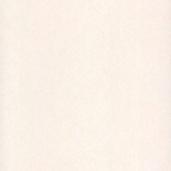 Флизелиновые обои Bn international Pure Passion 17383