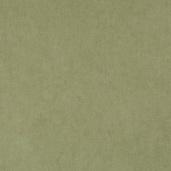 Виниловые обои Bn international 50 Shades of Colour SC48474