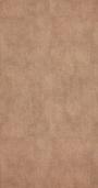 Виниловые обои Bn international Indian Summer 218534