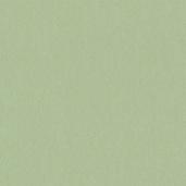 Флизелиновые обои Loymina Satori II A5 005