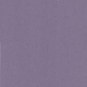 Флизелиновые обои Decor Delux Vivaldi B03002/481