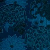 HW Kimono Club KC_Ref97061kl