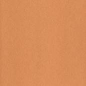 Флизелиновые обои Bn international Pure Passion 17392
