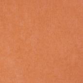 Виниловые обои Bn international 50 Shades of Colour SC48450