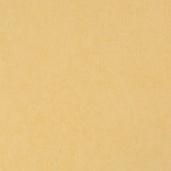 Виниловые обои Bn international 50 Shades of Colour SC48468