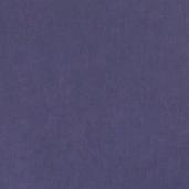 Виниловые обои Bn international 50 Shades of Colour SC48448
