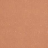 Виниловые обои Bn international Indian Summer 218545