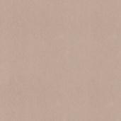 Флизелиновые обои Decor Delux Vivaldi B03002/479