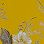 HW Kimono Club KC_Ref97053kl